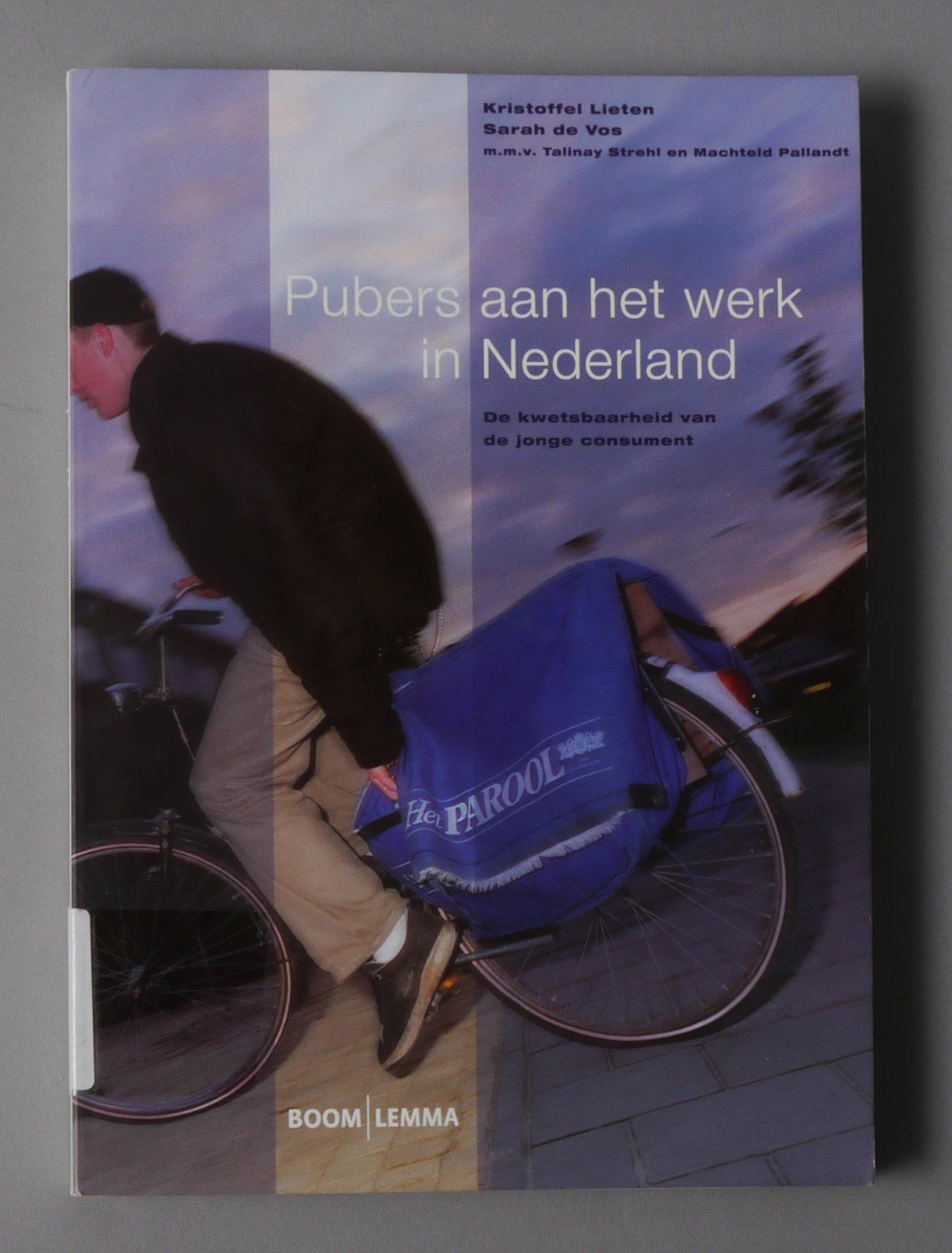 Pubers Aan Het Werk In Nederland: De Kwetsbaarheid Van De Jonge Consument.