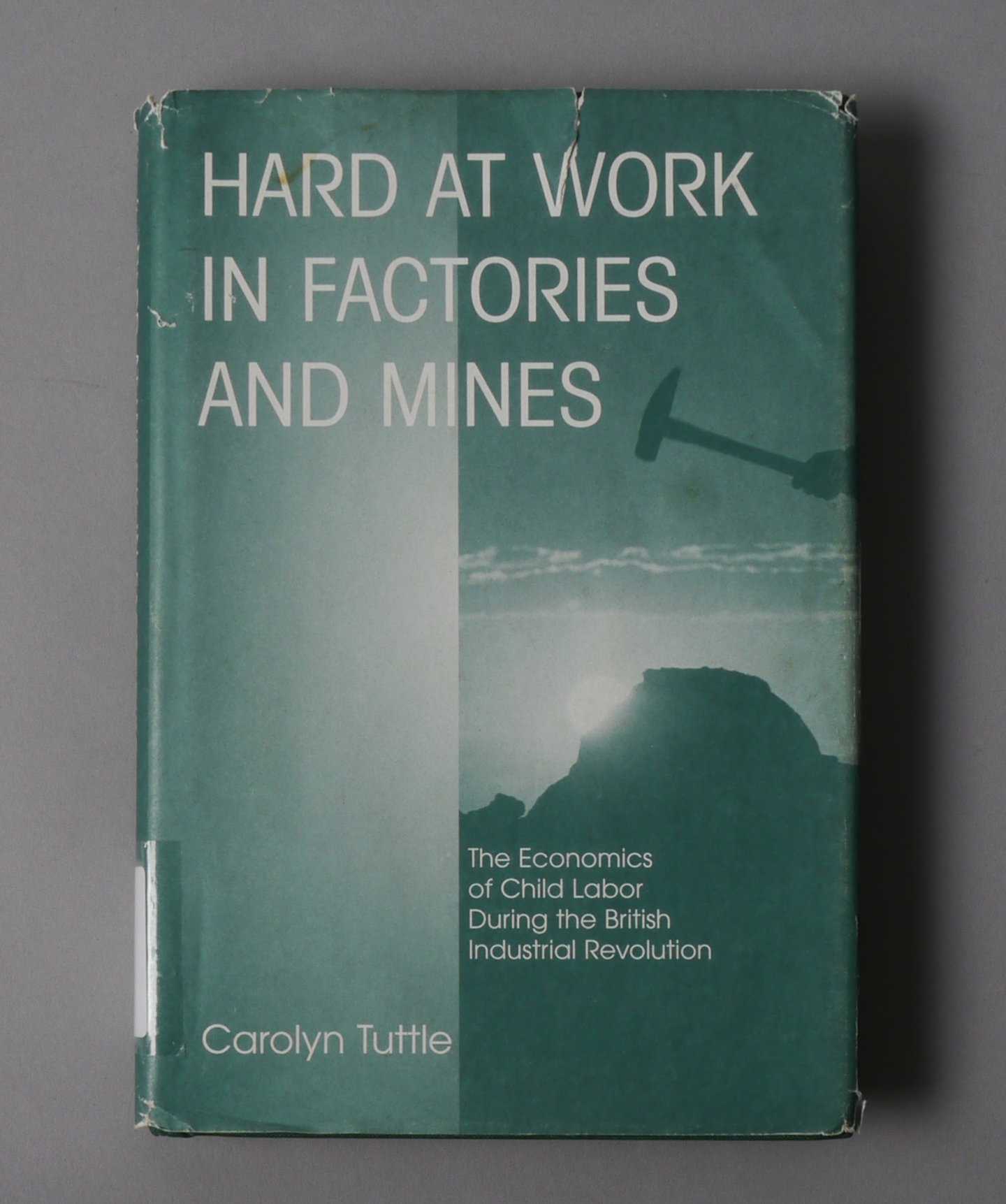 Hard At Work In Factories and Mines: the Economics of Child Labor During the British Industrial Revolution.